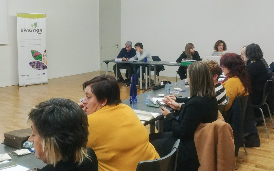 8ª REUNIÓN DEL COMITÉ DE GESTIÓN Y COORDINACIÓN DEL PROYECTO SPAGYRIA