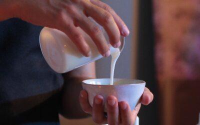 La elaboración de la crema Spagyria