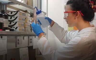 L'article rédigé par l'Université de Saragosse dans le cadre du projet a été accepté pour publication dans l'INTERNATIONAL JOURNAL OF MOLECULAR SCIENCES